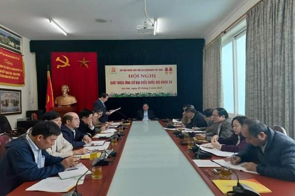 Hội Nạn nhân chất độc da cam/dioxon Việt Nam giới thiệu Thượng tướng Võ Trọng Việt ứng cử vào Quốc hội khóa XV